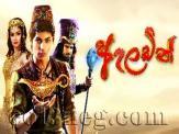 Aladin (146) - 08-04-2020