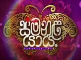 Samanala Yaya